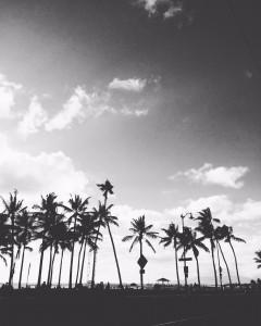 白黒 ハワイ